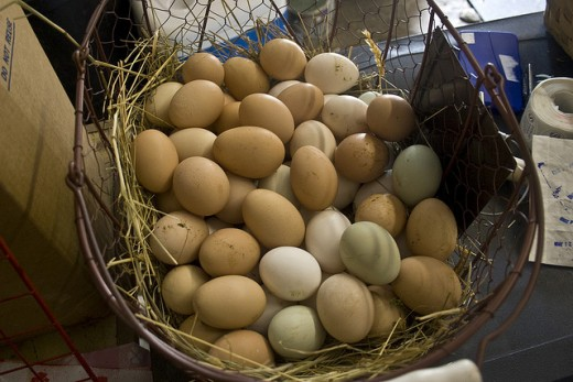 Don't put your eggs in one basket. Diversifying your investment provides protection against loss