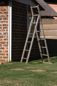 A ladder for sale! Showing its Height!