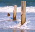 Delaware Seashore State Park Photo Gallery & Haiku Poems