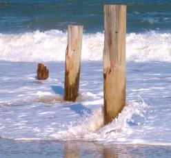 Delaware Seashore State Park Photo Gallery & Haiku Poems