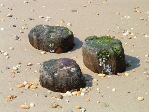 Illustration for Haiku Poem: Shifting Beach Sand.