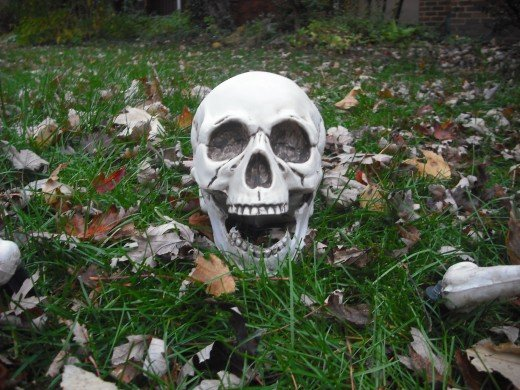 Halloween Skull used in this parody.