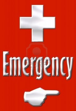 In Case of Emergency: In Memory of My Father