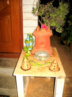 ANY HINDU HOME SHOULD HAVE THIS PLANT IN FRONT OF THEIR HOME DO POOJA DAILY TO AVOID ANY ILL EFFECT TO THE FAMILY IN THE HOUSE.