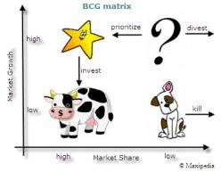 The BCG Matrix – Why understanding the difference between a Dog, Cow or a Star could save your Business.