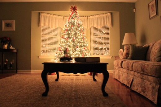 Christmas tree from 2010 in living room, i love the double reflection of the tree in the bow window.