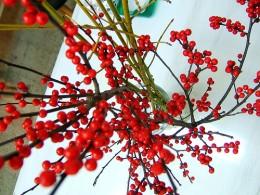 Winterberry, by ms. Tea