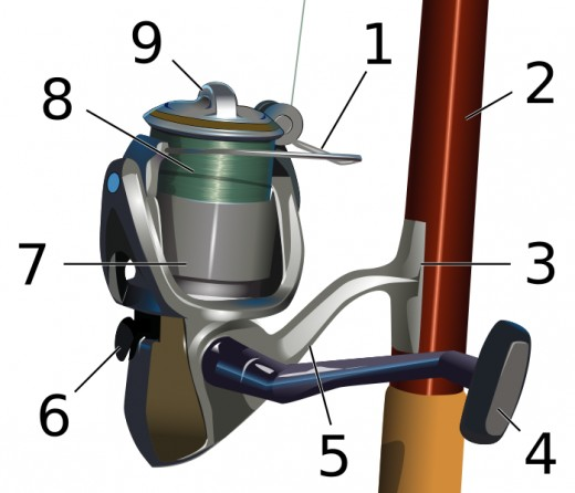 1: Pick up or bail 2: Reel seat 3: Reel foot 4: Handle 5: Support arm 6: Anti-reverse lever 7: Skirted spool 8: Fishing line 9: Drag adjustment knob