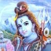 Sunil Gautam profile image