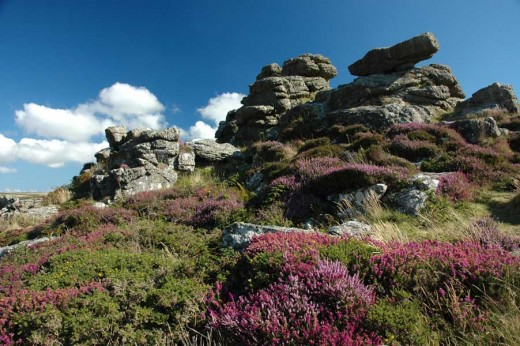 Carn Kenidjack on the West Cornwall moors