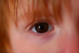A Child's Eye