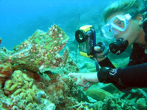 Scuba diving enables you to have a truly unique experience, that of discovering a totally different and unique environment. It is an occasion that provides for good memories and moments.