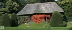 The Hawk House