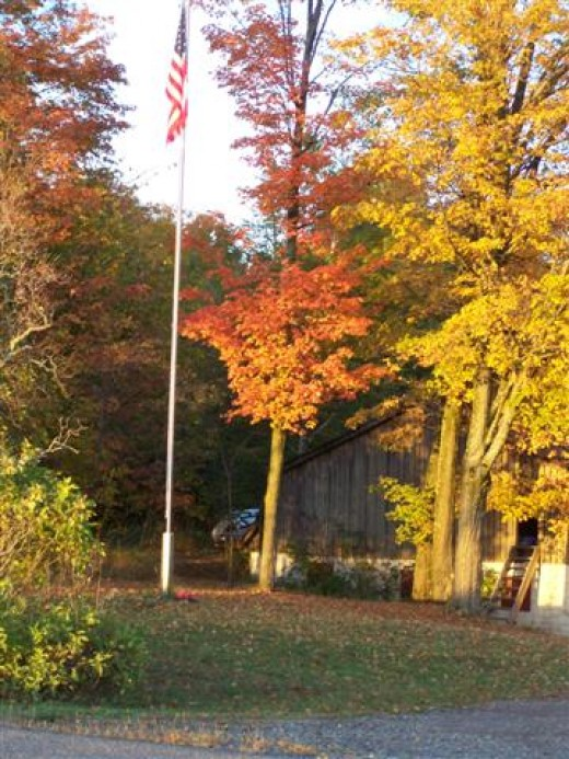 Fall colors last year.  Fall in Wisconsin And The Little Lost Ghost Pumpkin.