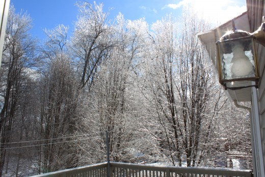 ice Storm from February 2011