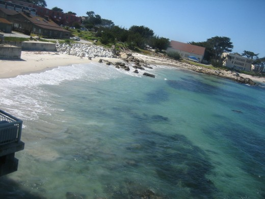 The Beautiful Waters Surrounding Monterey Bay Aquarium