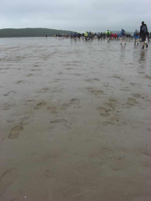 Throughout the summer organised walks take place across the bay.