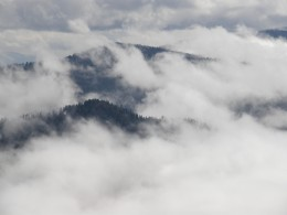 Clouds seen during the ascension of Mt. LeConte.