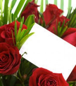 "WHAT BETTER WAY TO SAY ""I WAS WRONG,"" THAN TO GIVE ""HER"" A DOZEN EXPENSIVE RED ROSES!"