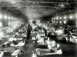 The 1918 Spanish Flu pandemic is estimated to have killed between 50 and 100 million people. Many of them young and healthy