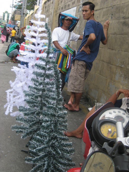 Christmas tree vendor
