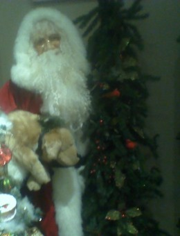 Father Christmas with a plush canine friend