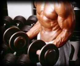 how to become a bodybuilder from scratch
