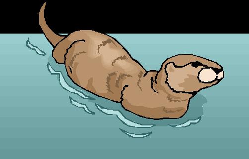 """""""Why do Otters swim Daddy?"""""""