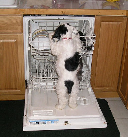 maytag washing machine wont drain