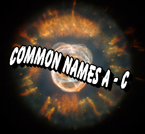 Eskimo Nebula (Author Added Text)