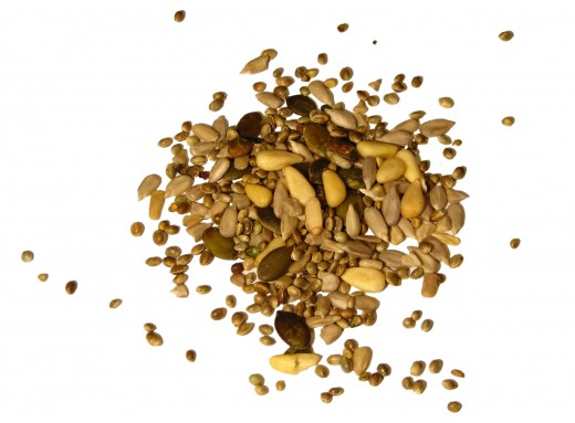 Buy seeds online. Information about gardening and growing plants from seeds.