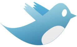 Make Money On Twitter By Leveraging Twitter Followers