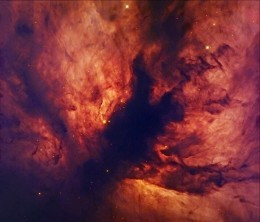 Close-up of Flame Nebula