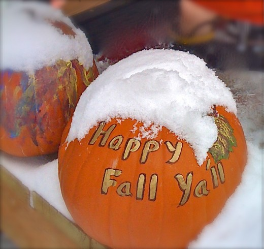This is something else that EM and Grandmama can do with pumpkins during Kenai's first snowfall!