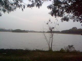 A Peaceful Scene