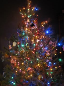 Dreaming of a Green Christmas: Eco-Friendly Gifts and Tips for the Holidays
