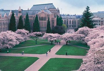 The Beautiful University of Washington Campus.