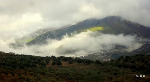 Mist after the rain
