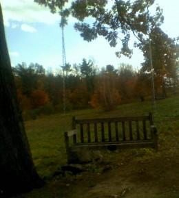 Tree swing at Tower Hill Botanic Garden
