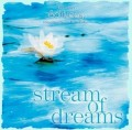 Therapeutic Music for Relaxation - Stream of Dreams CD by Dan Gibson (Solitudes Series)
