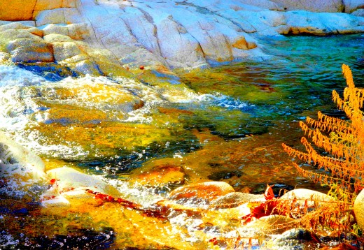 This close-up water scene has many different layers of color, reflections of the golden-red trees hovering over the creek..