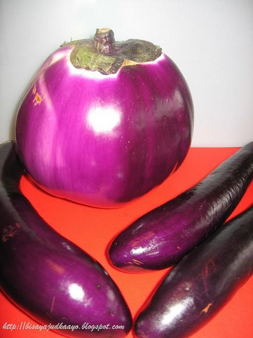 Eggplants or Talong (Photo Credit: bisayajudkaayo)