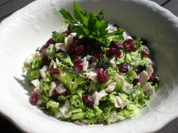 Raw Broccoli & Cranberry Salad