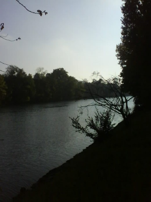 Autumn Scenery - Biel, Le Landeron - Walk Along The River