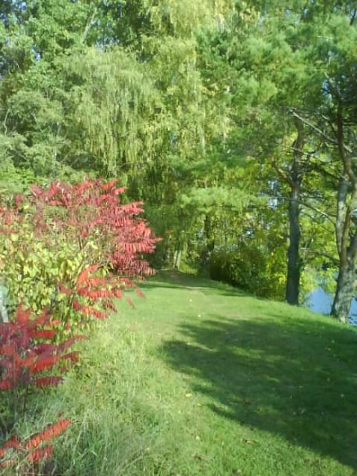 Autumn Scenery - Walk Along The River
