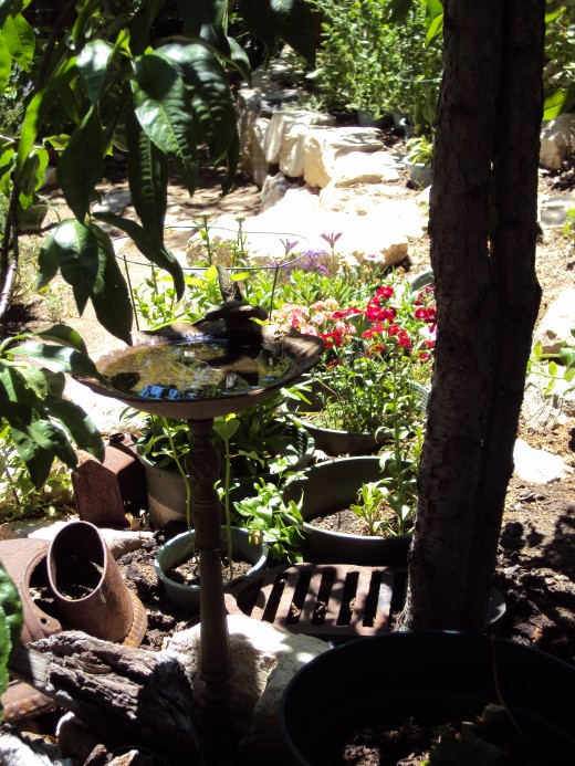 A bird bath in the garden.