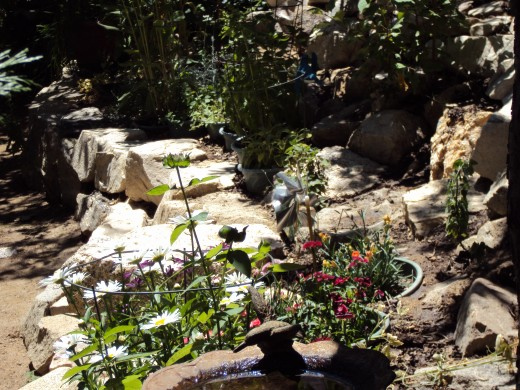 Flowers and bird baths in the garden.