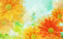 Go to http://www.free-wallpapers-free.com/preview/flower-art-sun-daisy-1/ to get free wallpaper!