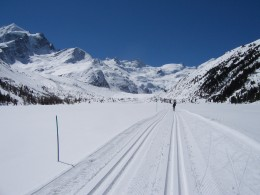 x-country skiing is a good way to escape the crowds