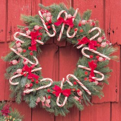 Making Your Own Christmas Wreaths